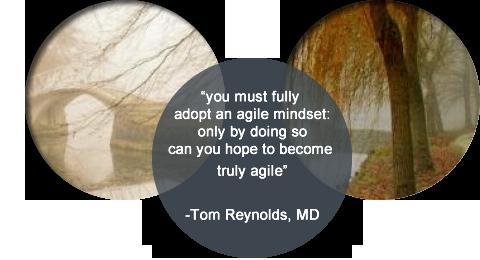 why an agile mindset